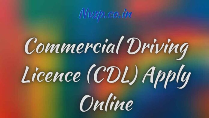 Commercial Driving Licence (CDL) Apply Online