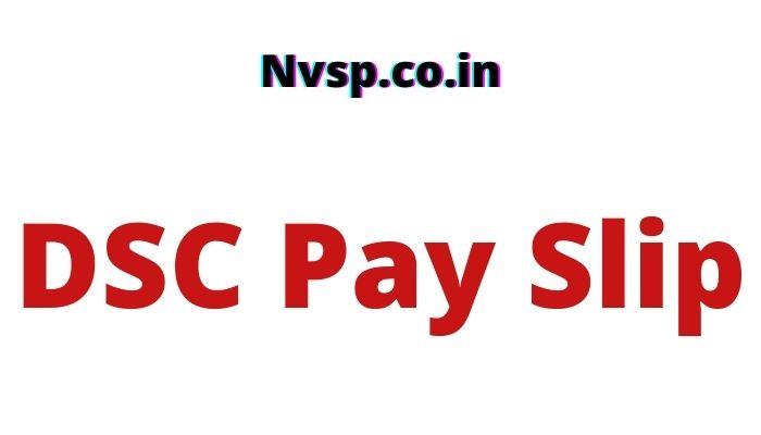 DSC Pay Slip